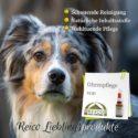 Bei Reico ist jeden Tag Welthundetag! -  Ohrenpflege, die schonende Reinigung und wohltuende Pflege für Hunde und andere Heimtiere